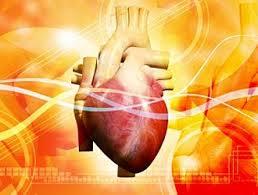cuore infarto