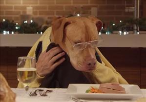 Video Di Natale Divertenti Un Gatto E 13 Cani Alla Cena Natalizia