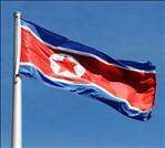 Corea del Nord vermi soldato disertore