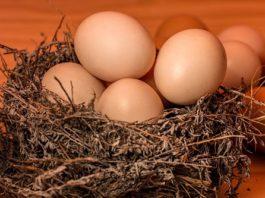 carenza uova Natale