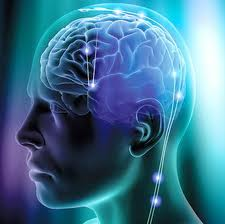cervello malattia huntington