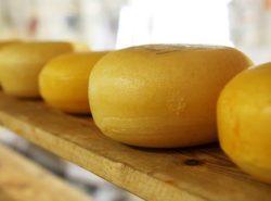 formaggio ritirato