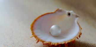 perla piatto ristorante