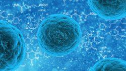 Microbioma umano