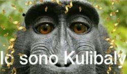 Koulibaly cartolina razzismo