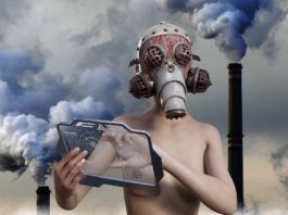 inquinamento terra
