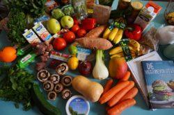 Annuncio di lavoro cibo vegano