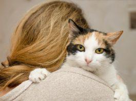 Donna gatto