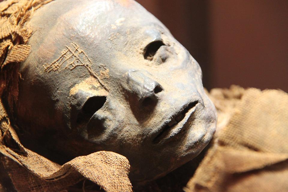 mummia incinta